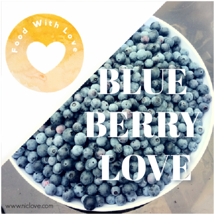 Blueberry love header image wc.png